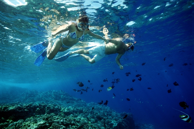Molokini Amp Lanai Snorkel Maui Family Vacation Activities