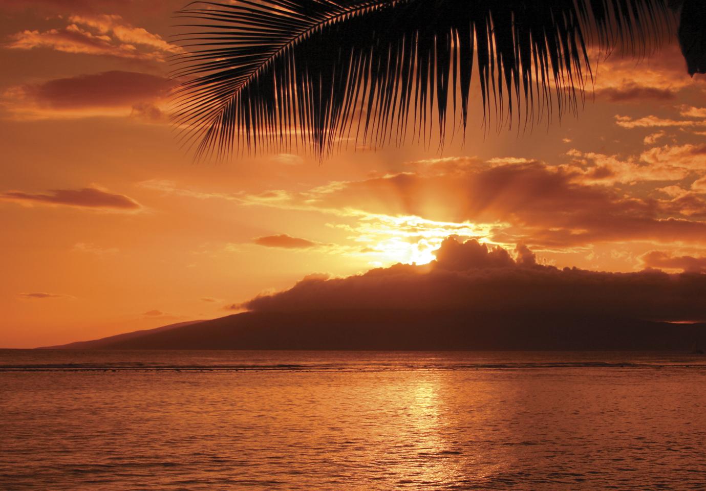 Maui Sunset Dinner Cruise   Hawaii Sunset Dinner Cruise ...