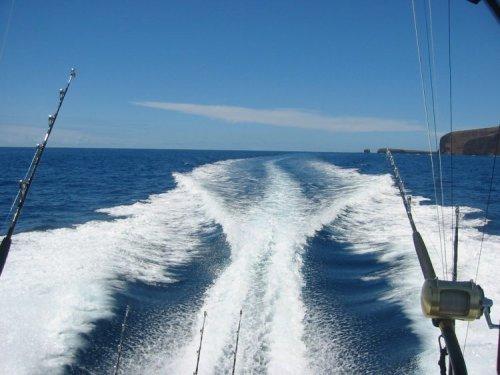 Kona activities kona private sportfishing kona fishing for Kona deep sea fishing