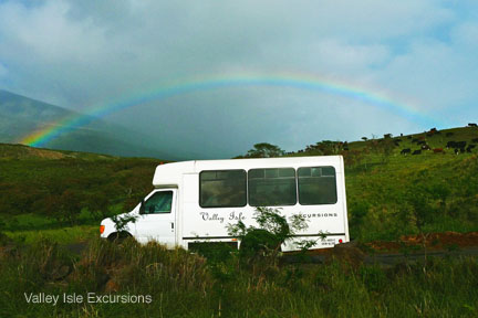 You can tour the most breathtaking drives on earth with Valley Isle Excursions, Maui's #1 Luxury Tour Company. On your way to