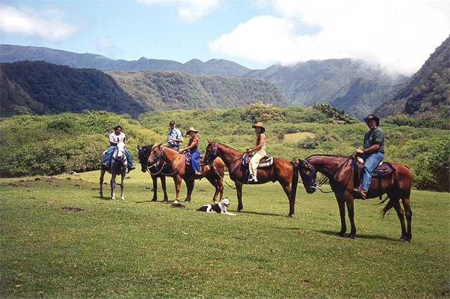 Hana Horseback Ride